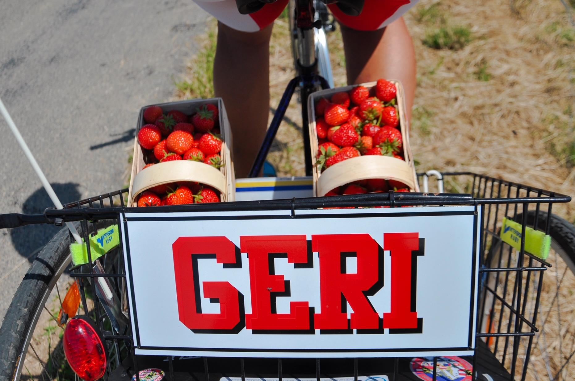 Erdbeerhof Wunderlich - Fahrraddress Geri